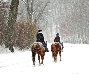 Prospect Park Mom Daughter Horses in Snow FULL